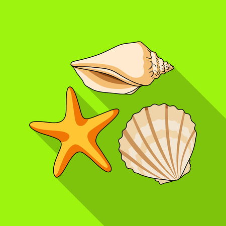 Seashells from the bottom of the sea.Summer rest single icon in flat style vector symbol stock illustration.
