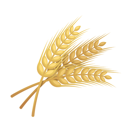 Sprigs of wheat. Plant for brewing beer. Pub single icon in cartoon style vector symbol stock illustration. Illustration