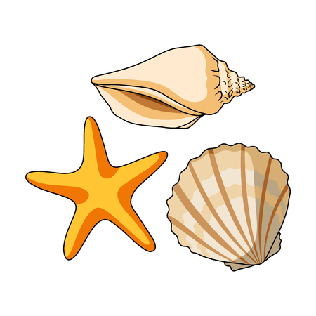 Seashells from the bottom of the sea.Summer rest single icon in cartoon style vector symbol stock illustration.