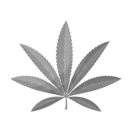Green leaf of hemp.Hippy single icon in monochrome style vector symbol stock illustration web. Illustration