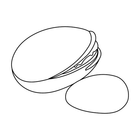 Green pistachio in the shell.Different kinds of nuts single icon in outline style vector symbol stock illustration. Ilustração