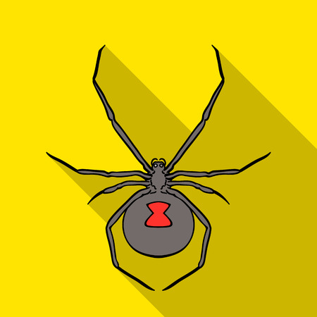 poison: Black widow spider icon in flat style isolated on white background. Insects symbol stock vector illustration.