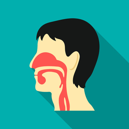 Respiratory system icon flat. Single medicine icon from the big medical, healthcare flat. Illustration