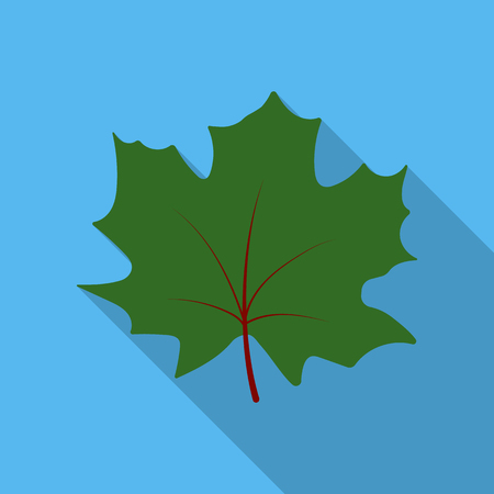Maple Leaf vector icon in flat style for web