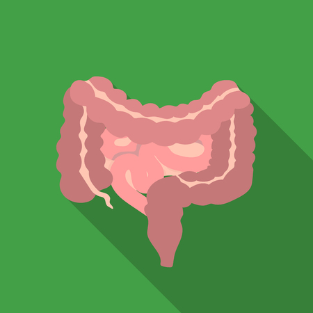 alimentary canal: Gastrointestinal tract icon in flat style isolated on white background. Organs symbol stock vector illustration. Illustration