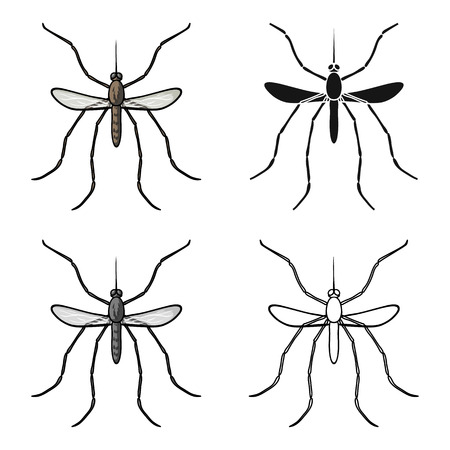 pest control: Mosquito icon in cartoon style isolated on white background. Insects symbol stock vector illustration.