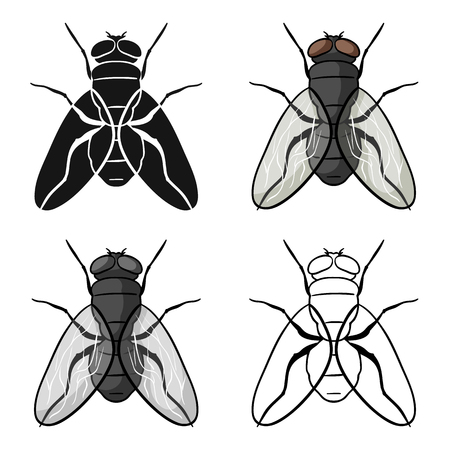 Fly icon in cartoon style isolated on white background. Insects symbol stock vector illustration. Illustration