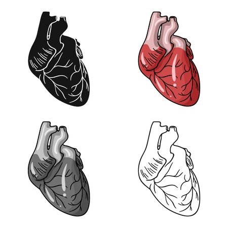 Human heart icon in cartoon style isolated on white background. Human organs symbol stock vector illustration.