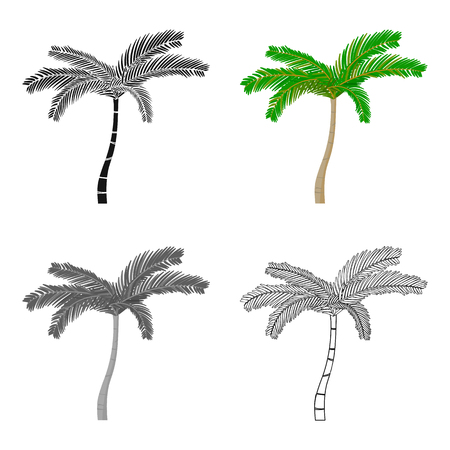 Mexican fan palm icon in cartoon style isolated on white background. Mexico country symbol stock vector illustration.