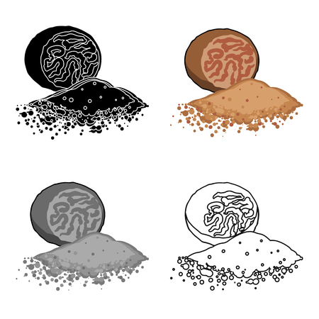 Nutmeg icon in cartoon style isolated on white background. Herb an spices symbol stock vector illustration. 向量圖像
