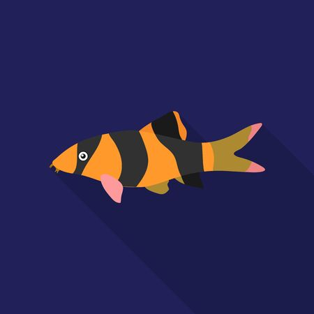 Botia clown (Botia macracantha) fish icon flat. Singe aquarium fish icon from the sea,ocean life flat.