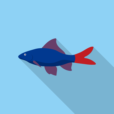 Red Tail Shark fish icon flat. Singe aquarium fish icon from the sea,ocean life flat.