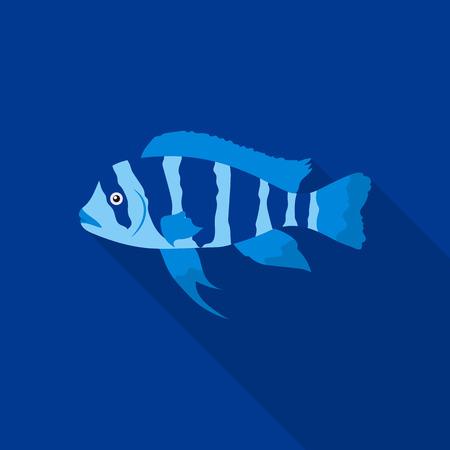 Frontosa Cichlid (Cyphotilapia Frontosa) fish icon flat. Singe aquarium fish icon from the sea,ocean life flat. Illustration