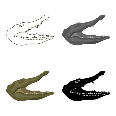 Crocodile icon in cartoon style isolated on white background. Realistic animals symbol stock vector illustration.