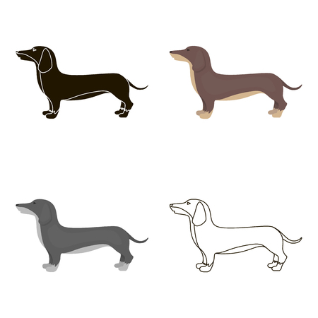 Dachshund vector icon in cartoon style for web Illustration