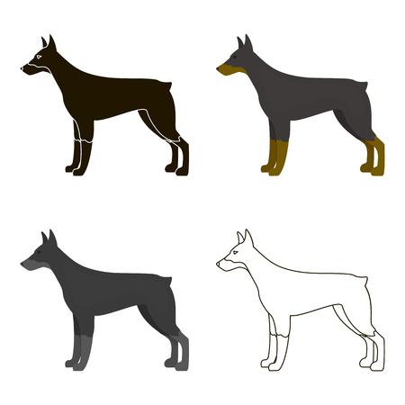 pincher: Doberman vector icon in cartoon style for web