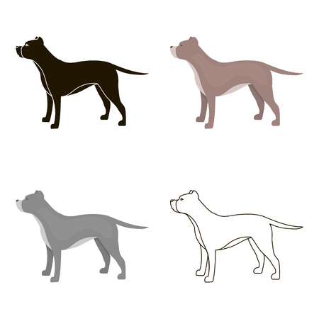 Pitbull vector icon in cartoon style for web