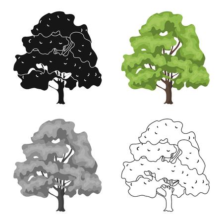 Canadian maple. Canada single icon in cartoon style vector symbol stock illustration web. Illustration