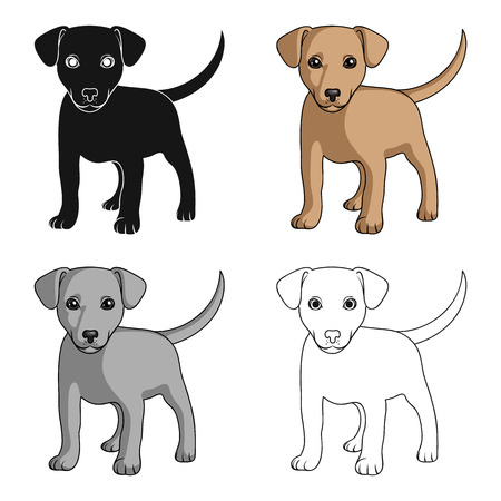 Puppy labrador.Animals single icon in cartoon style vector symbol stock illustration web. Illustration