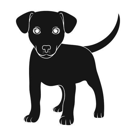 Puppy labrador.Animals single icon in black style vector symbol stock illustration web.