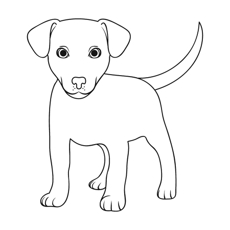 Puppy labrador.Animals single icon in overzicht stijl vector symbool stock illustratie web.