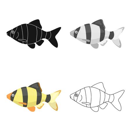 barbus: Barbus fish icon cartoon. Singe aquarium fish icon from the sea,ocean life cartoon.