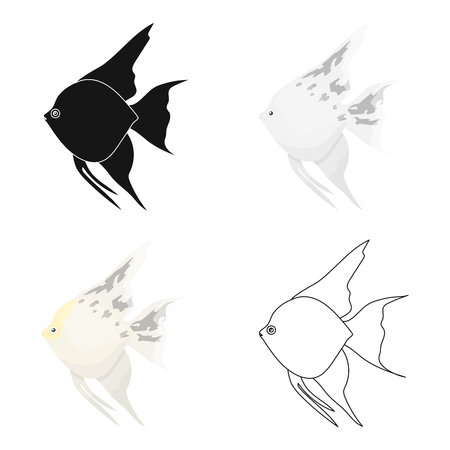 Angelfish common fish icon cartoon. Singe aquarium fish icon from the sea,ocean life cartoon.