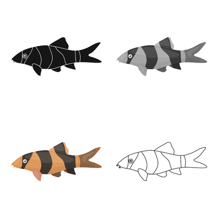 Botia clown (Botia macracantha) fish icon cartoon. Singe aquarium fish icon from the sea,ocean life cartoon.