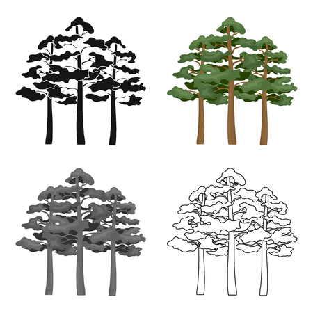 Pine vector icon in cartoon style for web