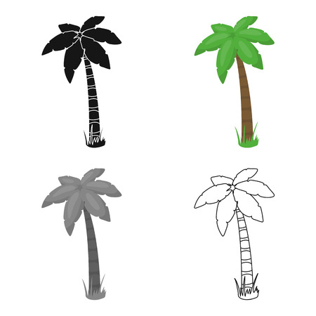 Palm vector icon in cartoon style for web Illustration