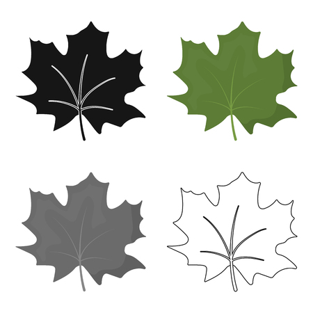 edmonton: Maple Leaf vector icon in cartoon style for web