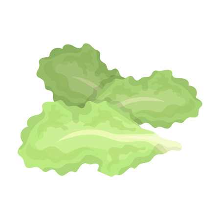 Salad leaves.Burgers and ingredients single icon in cartoon style rater,bitmap symbol stock illustration.