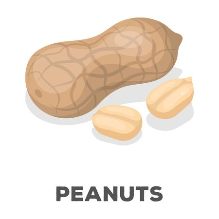 Peanut in the shell.Different kinds of nuts single icon in cartoon style rater,bitmap symbol stock illustration.