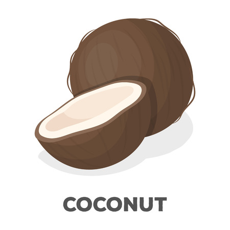 Coconat.Different kinds of nuts single icon in cartoon style rater,bitmap symbol stock illustration.