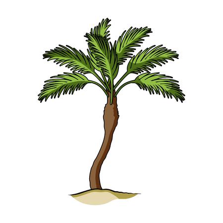 パーム ビーチの木。夏漫画スタイル評価者、ビットマップ シンボル ストック イラストの残り 1 つのアイコン。