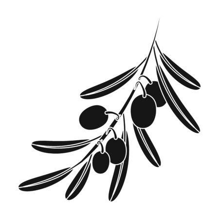 Rama de olivo. Foto de archivo - 77694218