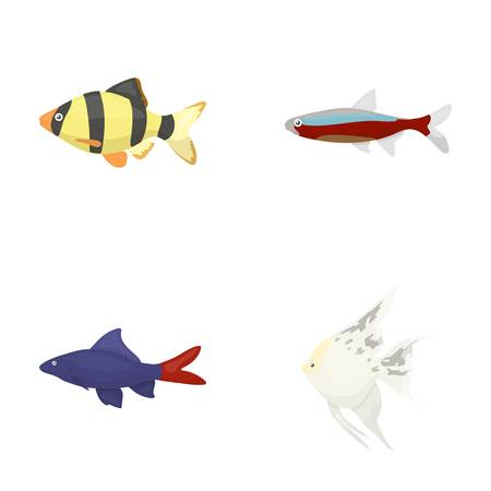 barbus: Angelfish, common, barbus, neon.Fish set collection icons in cartoon style vector symbol stock illustration .