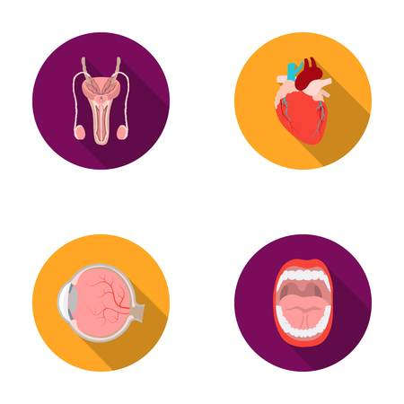 Male system, heart, eyeball, oral cavity. Organs set collection icons in flat style vector symbol stock illustration web. Illustration
