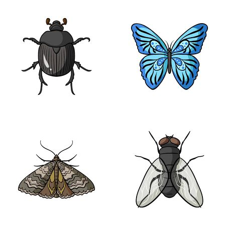 the wrecker: Wrecker, parasite, nature, butterfly .Insects set collection icons in cartoon style vector symbol stock illustration web.