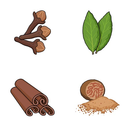 leaf logo: Clove, bay leaf, nutmeg, cinnamon.Herbs and spices set collection icons in cartoon style vector symbol stock illustration web. Illustration
