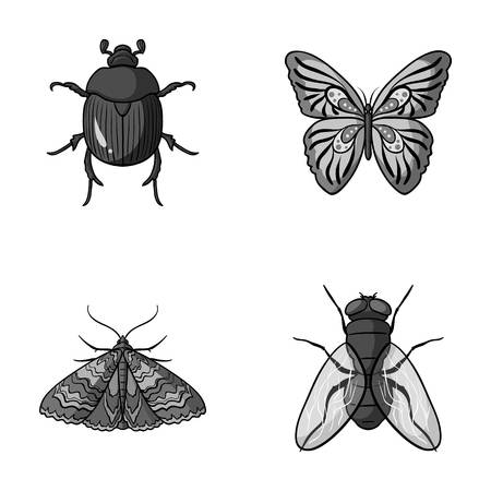 the wrecker: Wrecker, parasite, nature, butterfly .Insects set collection icons in monochrome style vector symbol stock illustration web.