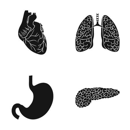 Heart, lungs, stomach, pancreas. Human organs set collection icons in black style vector symbol stock illustration web. Illustration