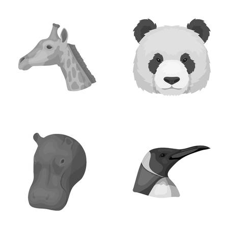 behemoth: Panda, giraffe, hippopotamus, penguin, Realistic animals set collection icons in monochrome style vector symbol stock illustration web.