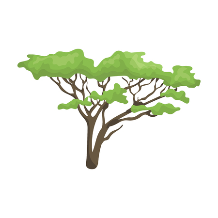 africa baobab tree: Tree in the savannah.African safari single icon in cartoon style vector symbol stock illustration web.
