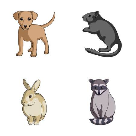 Puppy, rodent, rabbit and other animal species.Animals set collection icons in cartoon style vector symbol stock illustration . Illustration