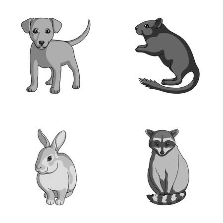 Animals set collection icons in monochrome style vector symbol stock illustration web.