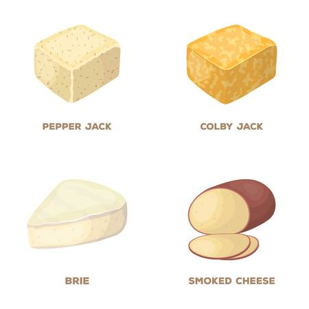 Brynza, smoked, colby jack, pepper jack.Different types of cheese set collection icons in cartoon style vector symbol stock illustration web. Çizim