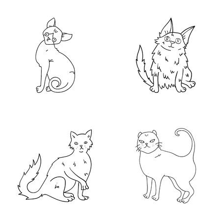 Turkse angora, Britse langharig en andere soorten. De kattenrassen plaatsen inzamelingspictogrammen in van de het symboolvoorraad van de overzichtsstijl vector de illustratieweb. Stock Illustratie