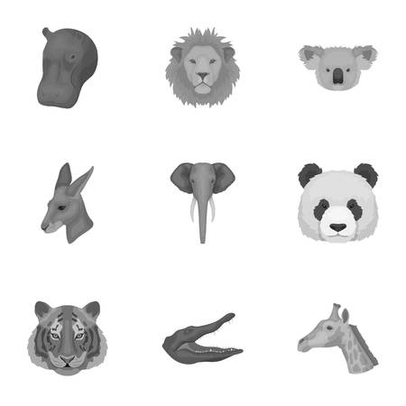 grey cat: A set of icons of wild animals. Predatory and peaceful wild animals.Realistic animal icon in set collection on monochrome style vector symbol stock illustration.