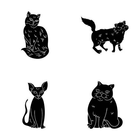 Sphinx, nibelung,norwegian forest cat and other species. Cat breeds set collection icons in black style vector symbol stock illustration web.